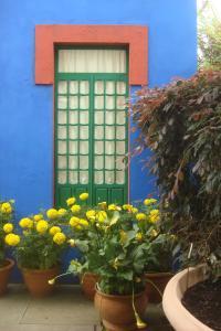 Casa Azul Tropical Garden Bronx Horticultural Garden June 2015-02