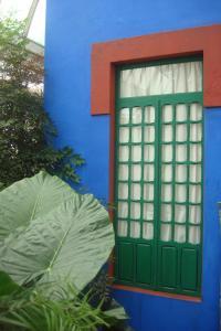Casa Azul Tropical Garden Bronx Horticultural Garden June 2015-31