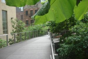 The High Line, New York, June 2015-30