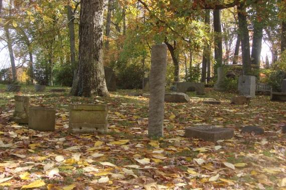 Hobbits Stonehenge October 2015-1