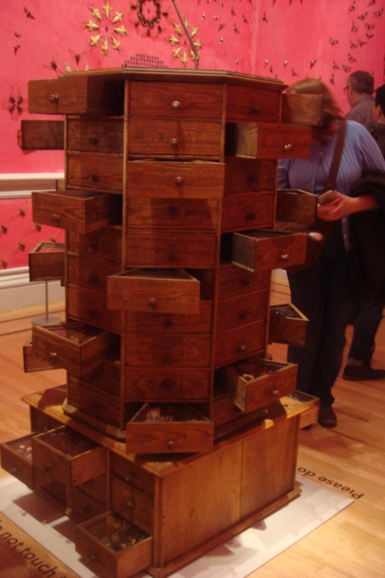 Jennifer Angus, Wonder, the Renwick, Smithsonian, DC 2015-15
