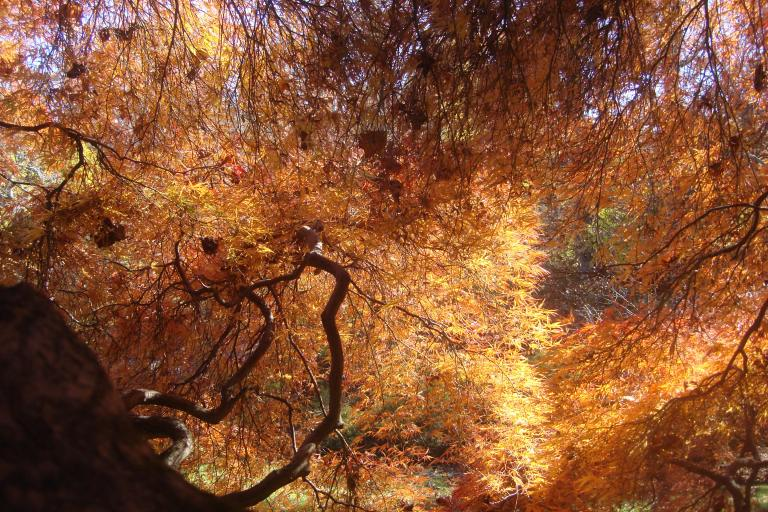 winterthur-november-3-2015-5